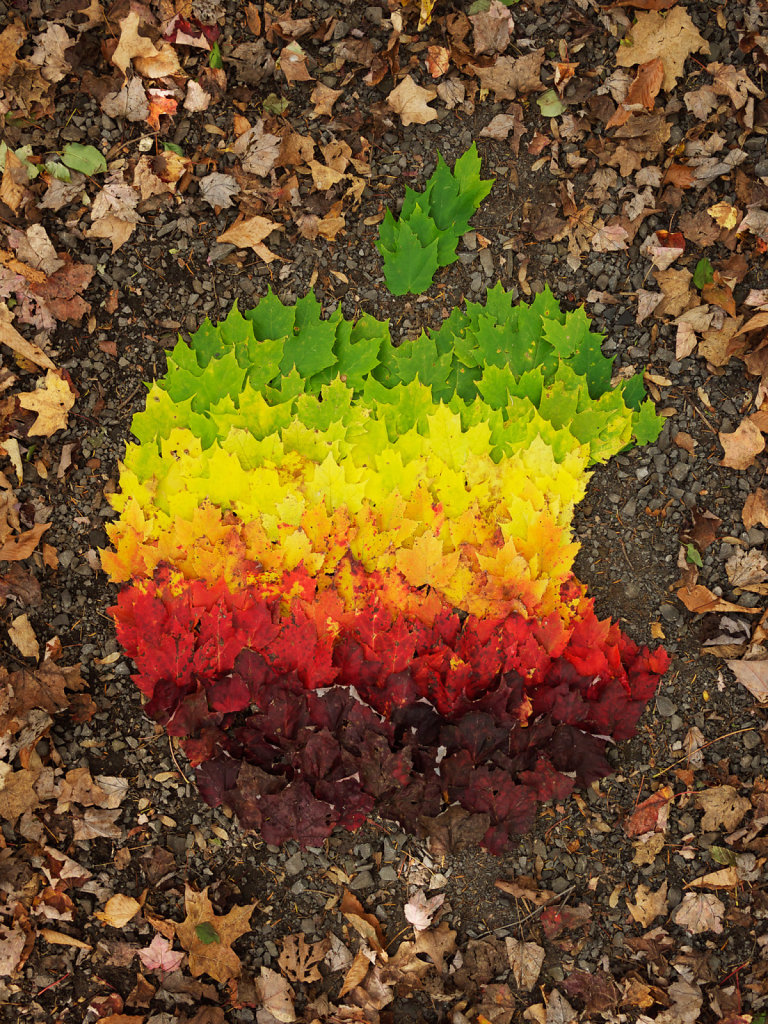 Autumn Spectrum tribute to Steve Jobs