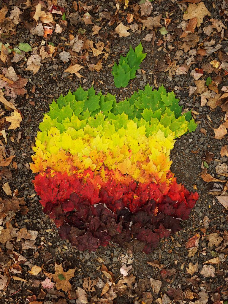 Autumn Spectrum tribute to Steve Jobs